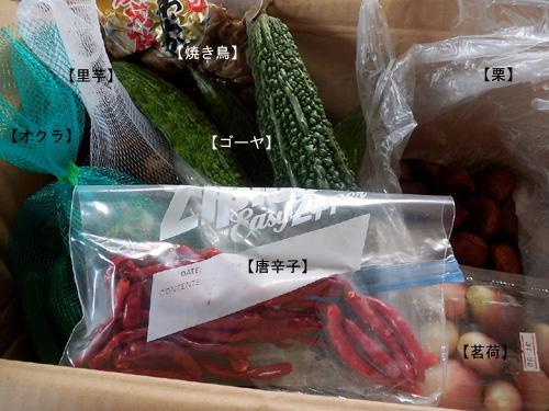 121006miyazaki.jpg